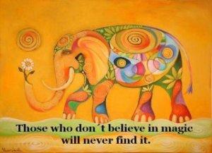 Elephant - believe in Magic