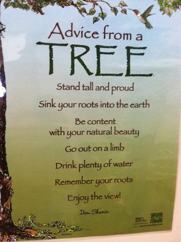 Message from a Tree on Earth Day | Napkinwriter