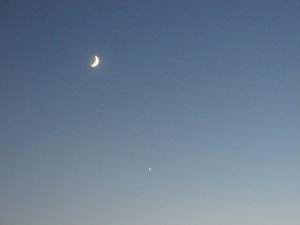 Venus Rising Tonight
