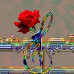 Melody of Roses