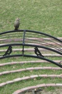 Bird on the arch