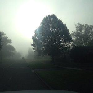 Albany Road- Taluskie